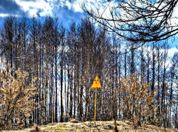 Fukushima And Chernobyl, Two Anniversaries For Measuring Damage